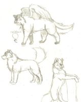 Page O' Doodles- Sika Sketches by BladerWolf