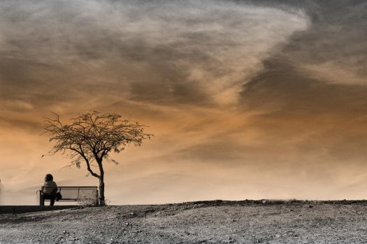 The Park Bench II by quadstar41562