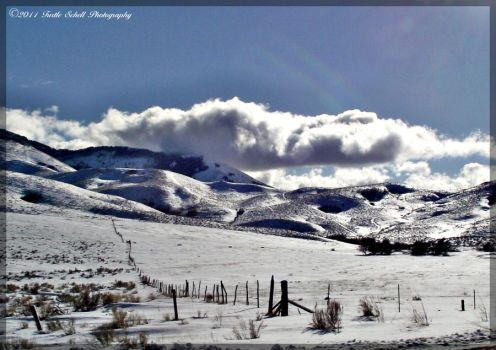 Winterscape 1 by melly4260