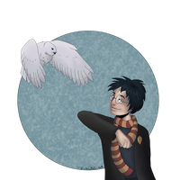 Harry And Hedwig by ShortFocus