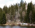Springtime in the Rockies 2 by COphotog