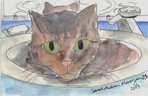 Kiwi in a sink by ladywillowpdx