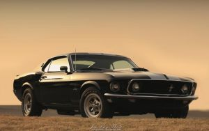 Mustang Sunset by joerayphoto