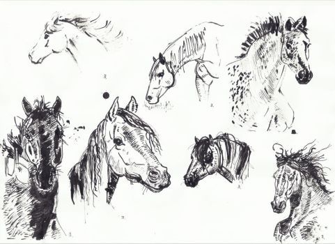 More inktober horses by proximafermata