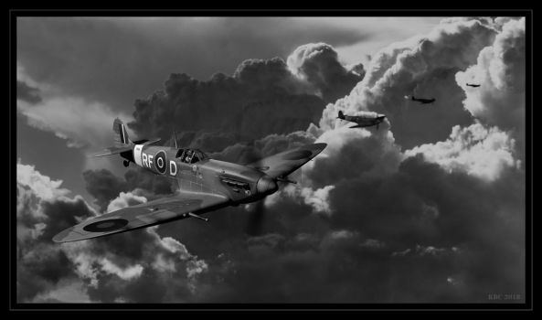 Flying Home. by lizard59