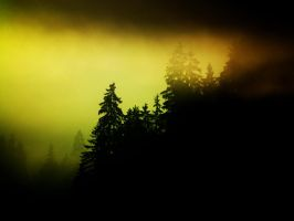 Fog comes around by Limited-Vision-Stock