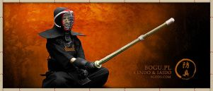 Kendo and Iaido by 9gods