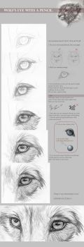 Tutorial: Wolf's eye with a pencil by Furrirama