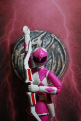 Power of the Pink Ranger by Botboy41