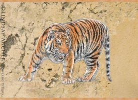 Prowling Tiger 2 by LinzArcher