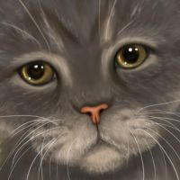 201154 quick cat face by Trutze