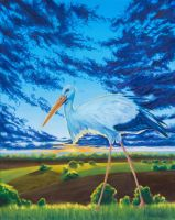 Stork in fields by dualtest