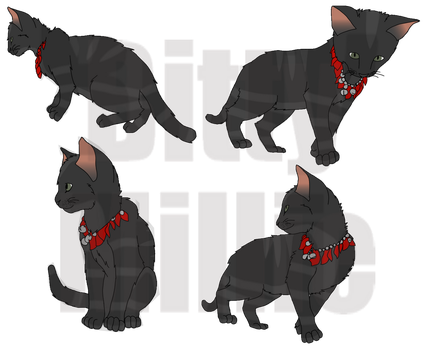 Kitty Poses by BittyMillie