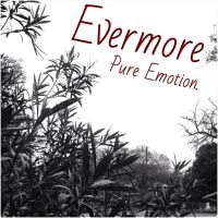 EVERMORE Cover by ChrisHollywood5