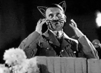 Hitler the cat  by MrsBrodericka