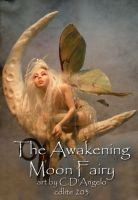 The Awakening Moon Fairy by cdlitestudio