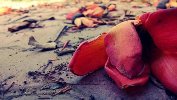 Lifeless Beauty by bogas04