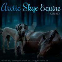 Stable Avatar | Arctic Skye Equine by skystream11