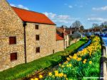 Helmsley by supersnappz16
