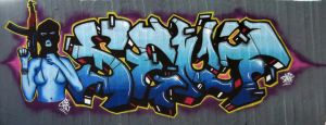The war on walls by Senf42