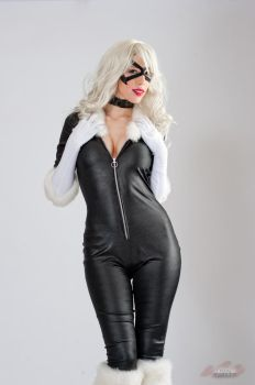 Black Cat Stock 2 by shut-up-and-duel-me