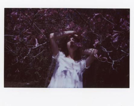 Rites of Spring Instax by Queen-Kitty
