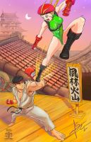 Street Fighter Ryu vs Cammy- Cannon Strike by SEL-artworks