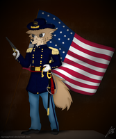 American Civil War: Union Commander by ZigZagGhost