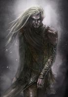 Elf Character- Laoss Male by chanmeleon