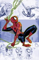 Spiderman pinup by Santolouco