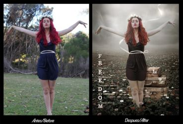 Before/after: Freedom by CrisestepArt
