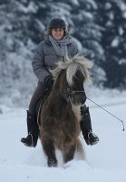 icelandic horse in favourite element by DieCooleSocke