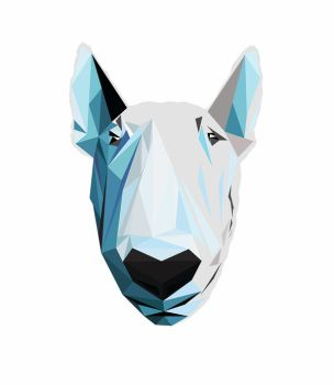Bull terrier by YoungASS