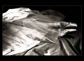Dreams of Satin and Tulle by Forestina-Fotos