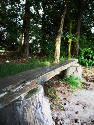Bench by Robke22