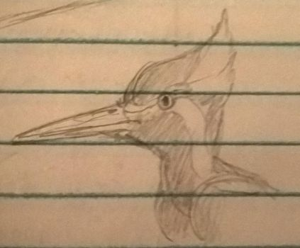 Doodle Woodpecker by CMIPalaeo