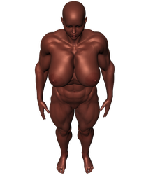 Stock-230lb-6ft0in-16bi-HWBoxer-P01-A10-Standing by ShadowRx