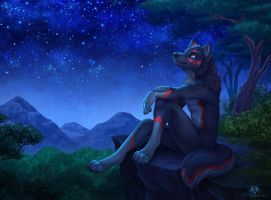 Calm Night by DolphyDolphiana