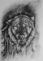 Snarling by SteelC