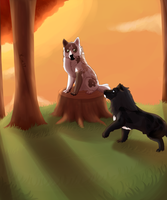 Sunset Woods by Kiire