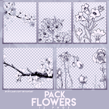 PACK PNGS: Flowers Draw | ByunCamis by ByunCamis
