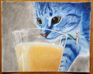 Pippi the cat, coloured pencil by PokeponyAquaBubbles