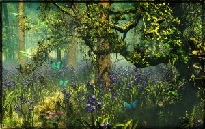 Bluebell Forest by struckdumb