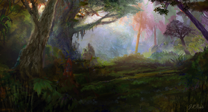 Forest by JKRoots
