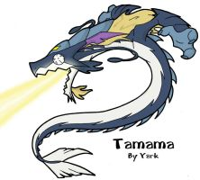 Fanart- Dragon Tamama by Yark-Wark