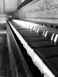 The Piano by vlnfltrlh