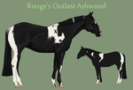 Rouge's Outlast Ashwood by theRyanna