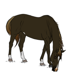WBS Reckless Intensity *SOLD* by angry-horse-for-life