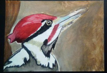 Pileated Woodpecker Painting by Sparky--Nigo