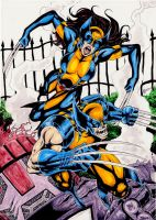 New Wolverine And Wolverine by gregohq